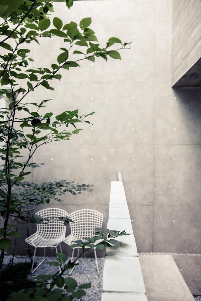 Una vista del jardín.