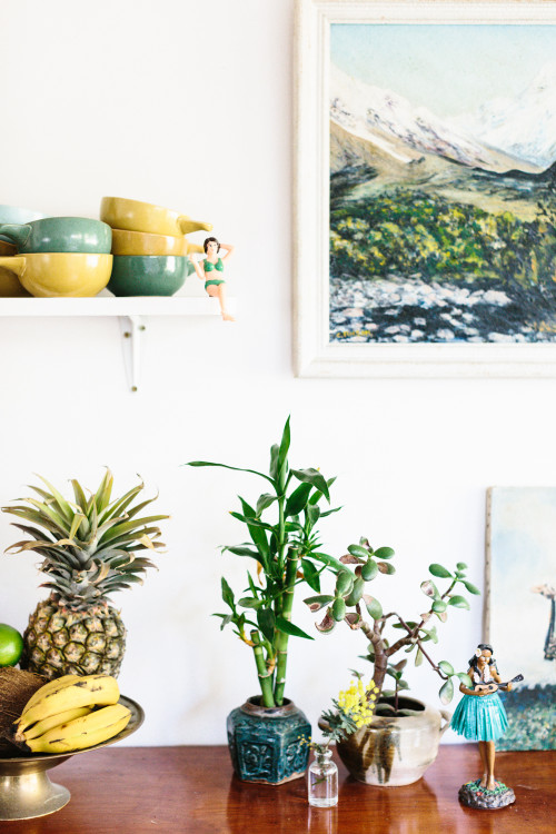 Plantas y elementos decorativos.